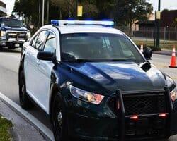 Scorpion protection Patrol Service